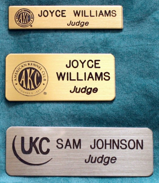 Brass Judge's Pins - All Three Sizes with Logo