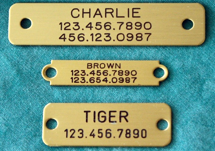 Brass Collar Tags All 3 Sizes